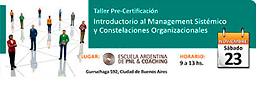Taller Pre-Certificación introductorio al management sistémico constelaciones organizacionales