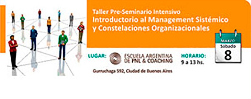 Taller Pre-Seminario intensivo introductorio al management sistémico y constelaciones organizacionales